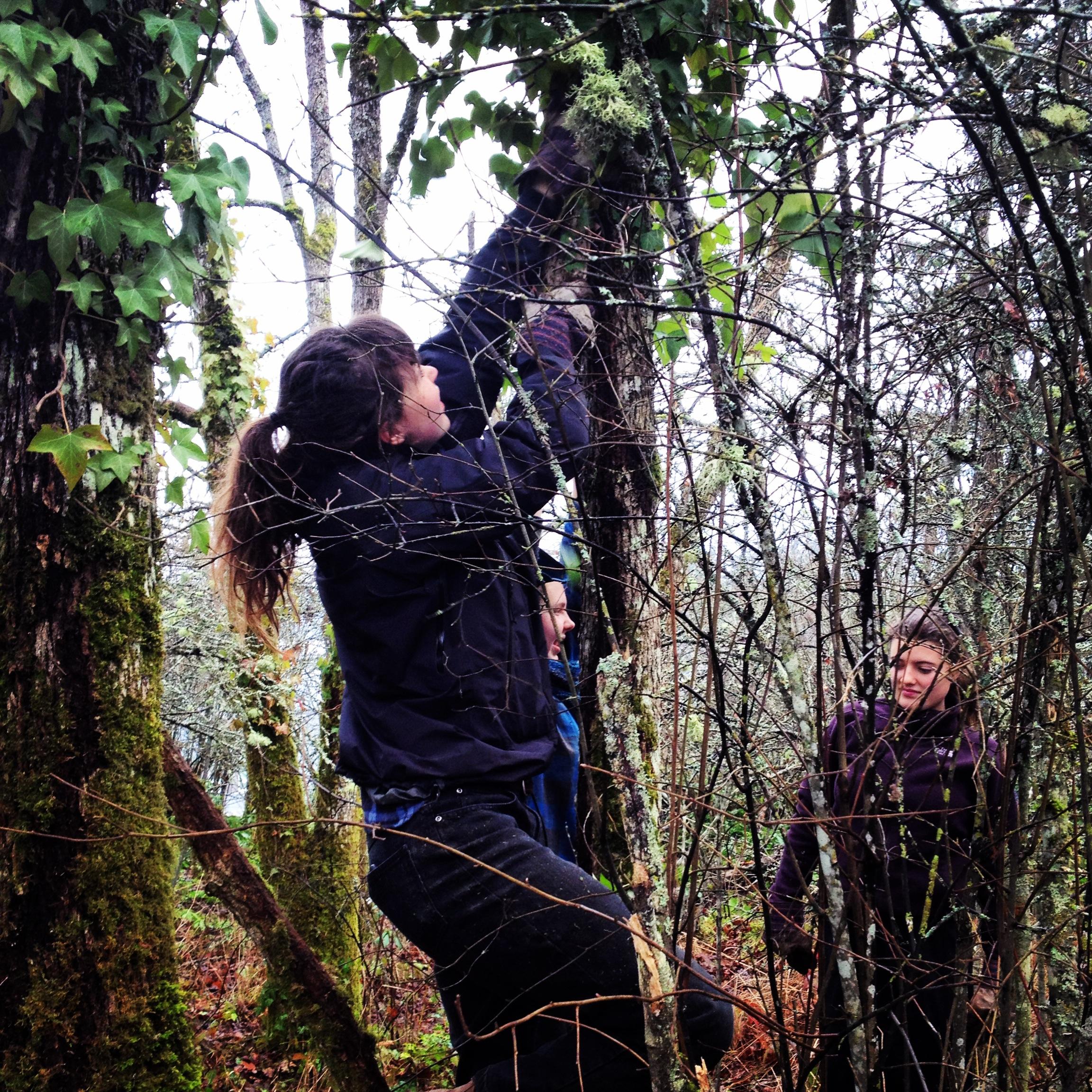Sierra Club BC Youth Environmental Leadership Progra