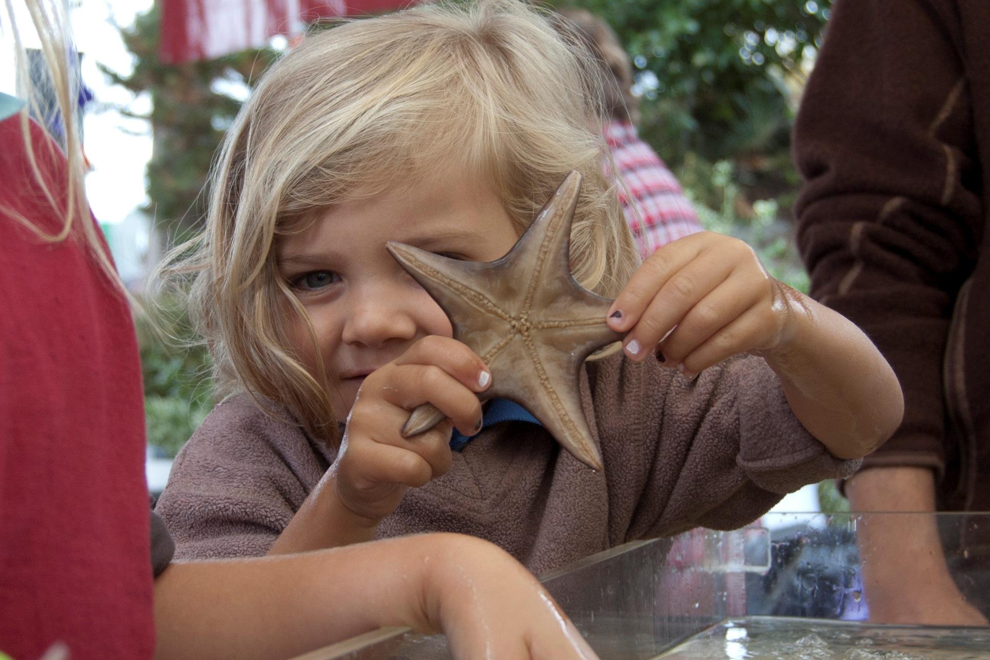 Eco Learning Hive - Seaquaria